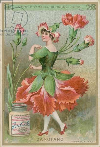 Carnation Flower Girl (chromolitho)