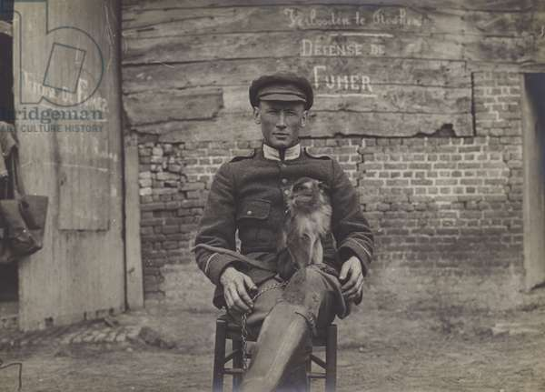 Bouddha, the pet cat of a squadron of lancers on the Belgian front (b/w photo)