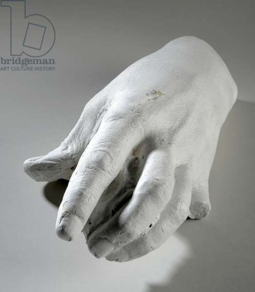 Cast of a left hand (plaster)