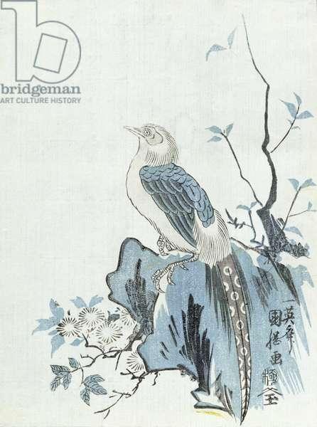 Bird on a Rock (woodblock print)