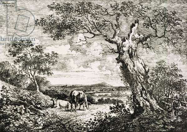 Two cows in a field (litho)