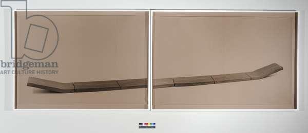 Figure (Part 3), 2008 (photographs (selenium-toned gelatin silver print), brown acrylic glass, wood frame)