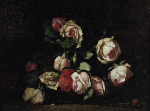 Drooping Roses (oil on canvas)
