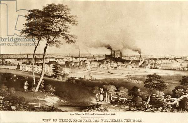 View of Leeds, from near the Whitehall New Road, 1846 (litho)