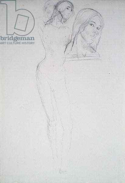 Studies for '2nd Bust of Euphemia Lamb', 1911 (pencil on paper)