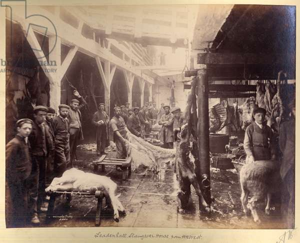 Leadenhall Slaughter House, from the West, 1870-90 (b/w photo)