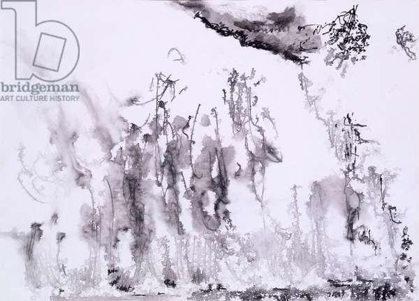 Victoria Falls, 1981 (pen & ink wash on paper)