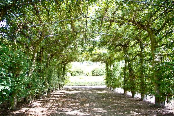 Pergola, Temple Newsam House, West Yorkshire (photo)
