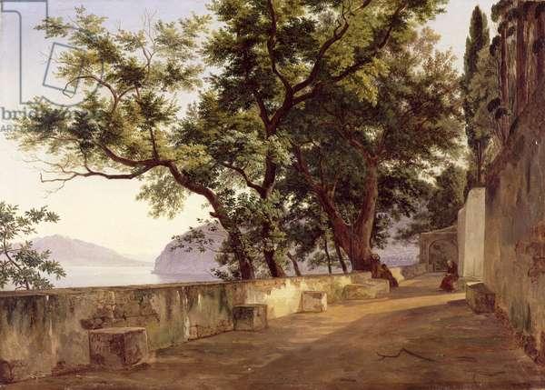 Garden of the Capuchin Friars, near Sorrento, 1827 (oil on canvas)