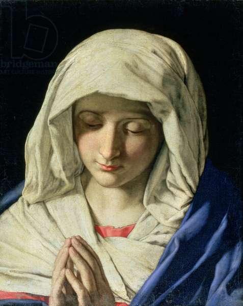 Madonna at Prayer (oil on canvas)