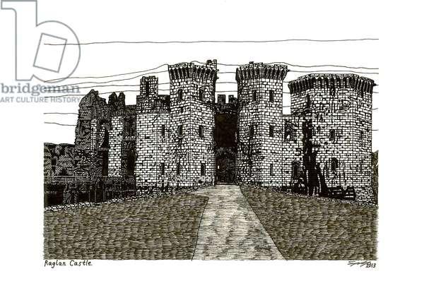 Raglan Castle, 2013