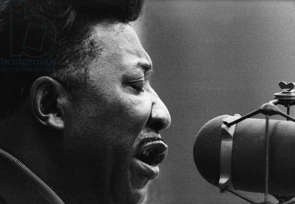 Muddy Waters American blues