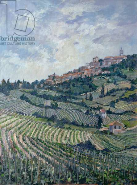 Vineyards, Tuscany (oil on canvas)