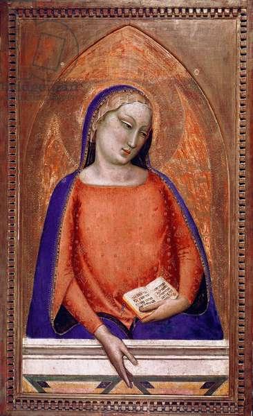 The Madonna of the Magnificat Painting by Bernardo Daddi (ca. 1290-1348) 14th century Pinacoteca Vaticana, Rome