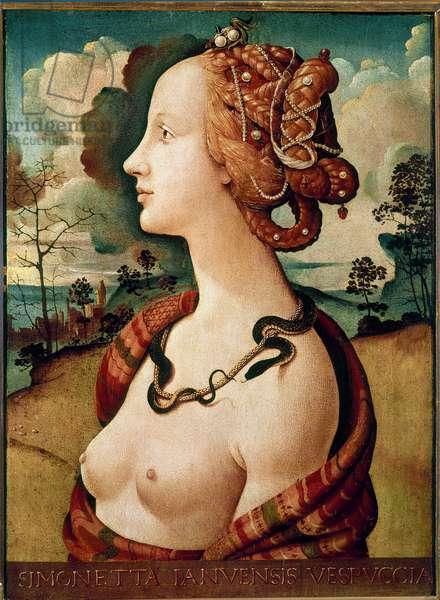 Portrait of woman said of Simonetta Vespucci Detrempe on wood by Piero di Lorenzo dit Piero di Cosimo (1462-1521) 1480 Sun. 0.57 X 0.42 m Chantilly, Musee Conde