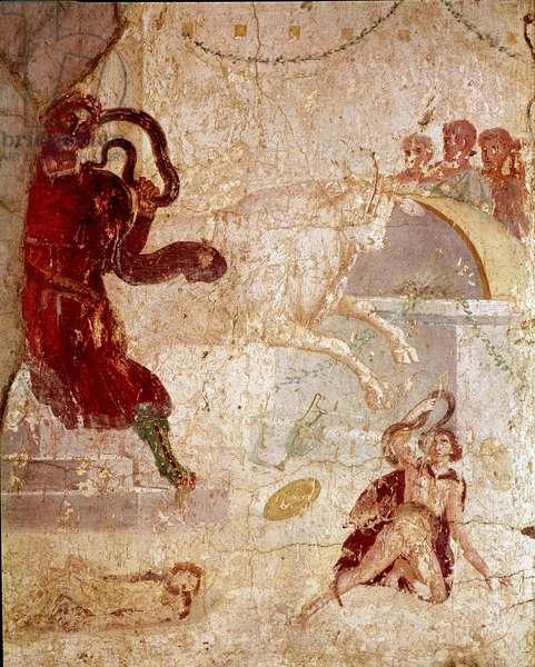"Roman Art: """" Laocoon"""" (Roman art, Laocoon) fresco from the house of Laocoon, Pompei, 1st century AD (detail of fresco from casa di Laocoonte, Pompeii, 1st century AC) Dim 130 x 80 cm Naples, Museo Archeologico Nazionale, inv 111210"