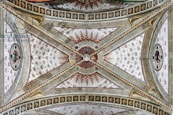 Vault of central nave Milan, Basilica di Santa Maria delle Grazie Italy