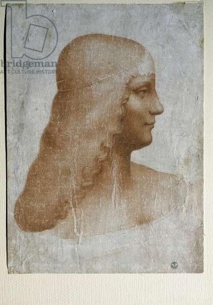 """Portrait of Isabella d'Este (1474-1539), Marchesa of Mantua, in profile - Drawing by Leonardo da Vinci (1452-1519), red and black chalk, on paper, ca. 1500 - """""""" Portrait of a woman called of Isabella d'Este (1474-1539), Marquise of Mantua"""" Drawing with black stone and blood by Leonardo (Leonardo da Vinci) (1452-1519) Florence, Galleria degli Uffizi ( Offices)"""