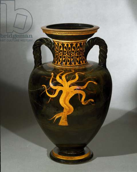 Pelike: a snake on a tree (hydra). 6th-5th century BC (terracotta)