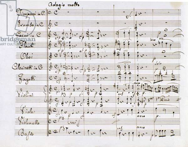 Sheet music page of the Symphony n. 1 in C major by Ludwig van Beethoven (engraving)