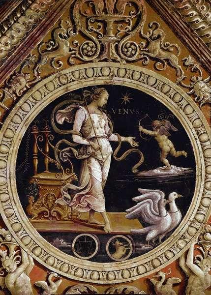 Allegorical representation of Venus Fresco detail by Pietro di Cristoforo Vannucci dit Le Perugin (Il Perugino) (ca. 1448-1523), courtroom, palazzo dei Priori, collegio del Cambio, Perugia (Perugia)