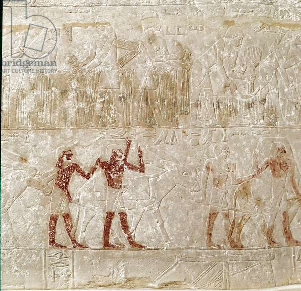 Egyptian antiquite: scenes of daily life from the Mastaba wall from Werirenptah to Saqqara (Sakkara). 5th dynasty. London,; british museum