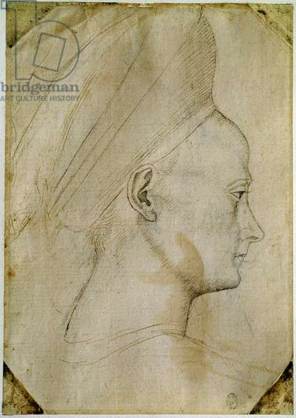 Young woman's head, 15th century (Brown ink and black stone drawing)