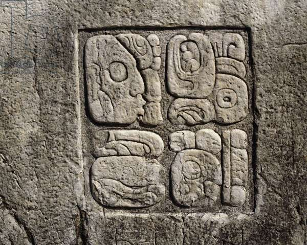Precolombian Art, Mayan Civilization: Glyphs, House C, Patio 2, Palace 7th-10th Century Palenque, Chiapas Mexico (pre-columbian art, maya civilization: glyphs in the house C, patio 2 in the palace 7th-10th century Palenque Chiapas, Mexico)