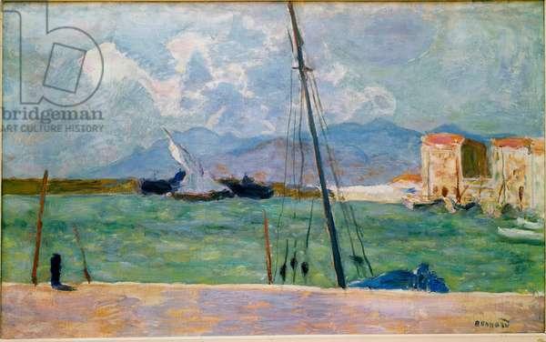 The Latin Sail Painting by Pierre Bonnard (1867-1947) 1917 Paris, Collection Bernheim-Jeune