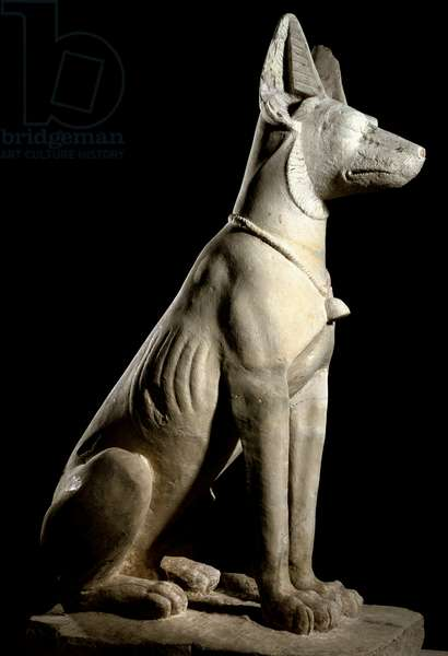 Anubis, the jackal god associated with the afterlife(Stone sculpture, 1rst century AD)