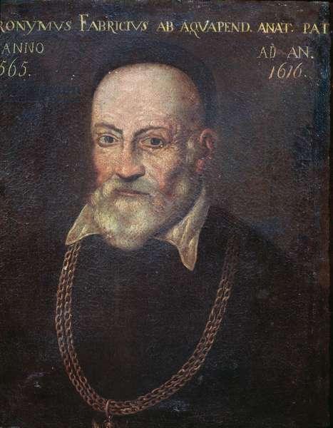 Portrait of pioneering anatomist and surgeon Hieronymus Fabricius (painting, 16th century)