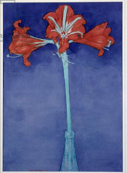 Amaryllis (Hippeastrum) Painting by Piet Mondrian (1872-1944) New York, Museum of Modern Art