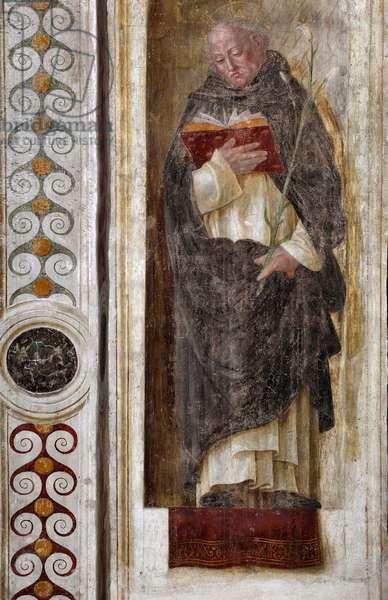 Representation of Saint Dominica of Guzman (ca. 1170-1221) (St Dominic) Fresco by Bernardino Butinone (1435-1507) 1482-1486 Basilica di Santa Maria delle Grazie Milan Italy