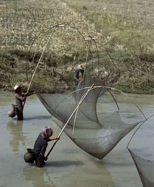 Fishers with traditional nets in Chiang Mai Thailand (Fishers with traditional nets in Chiang Mai, Thailand)