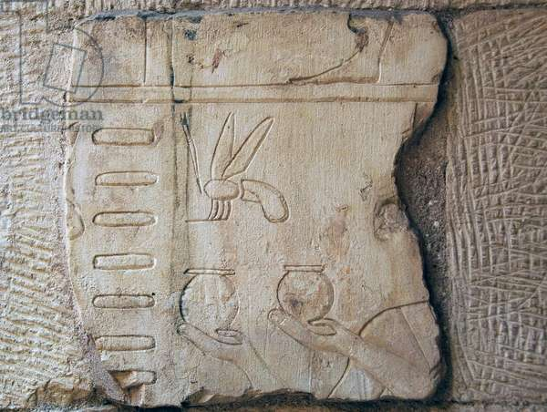 Detail of a Relief, Luxor (stone)