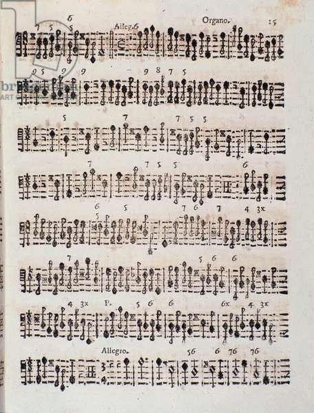 """Page of musical score of """""""" Sonata a 2 violini, violoncello e organo, op. 5"""""""" by Giuseppe Aldrovandini (Aldovandrini, Aldrovandin, Aldrovandon, Altrobrandino) (1671-1707) Italian Baroque composer. Sheet music page for """""""" Sonata a deux violins, cello, organ, opera 5"""" by Giuseppe Aldrovandini (1671-1707). 1706. Bologna, civico museo."""