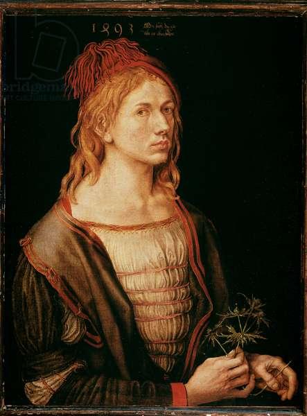 Self Portrait with a Thistle (Painting, Parchment glue on canvas, 1493)