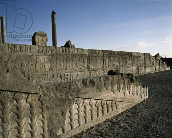 Reliefs on the northern staircase of the palace, 518-548 century BC, Apadana, Persepolis, Iran (photo)