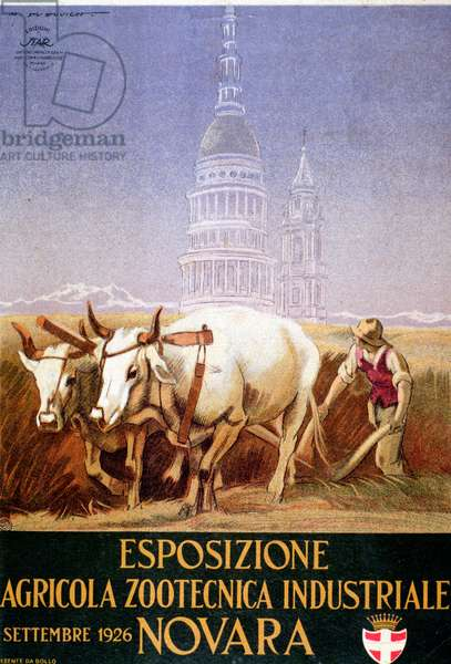 Poster of fascist period by Marcello Dudovich (1878-1962) for the agricultural exhibition of Novara (Novara), 1926 - Advertising poster for the agriculture exhibition in Novara, Italy, 1926 - Private collection