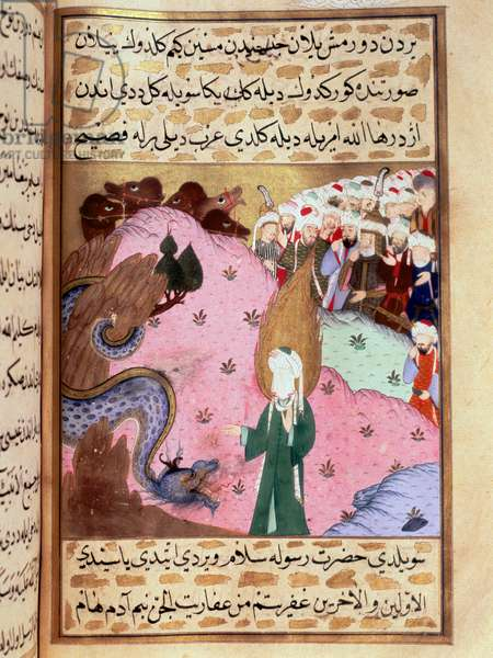 "Muhammad, represents the hidden face, tames a Miniature snake from ""Siyer-i Nebi"" (Siyer i Nebi) epic poem recounting the life of the prophete Muhammad written by Mustafa, son of Yusuf d'Erzurum under the reigns of Murad III (1574-1595). Miniature of Lutfi Abdullah (d. 1607) 16th century Istanbul, Topkapi Sarayi Museum"
