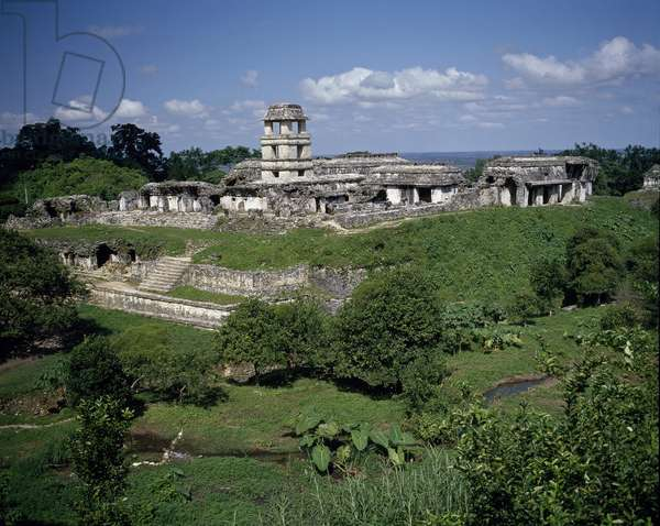 Precolombian art, Mayan civilization: view of the site of Palenque 7th-10th century Chiapas Mexico (Archeological site of Palenque, maya civilization)