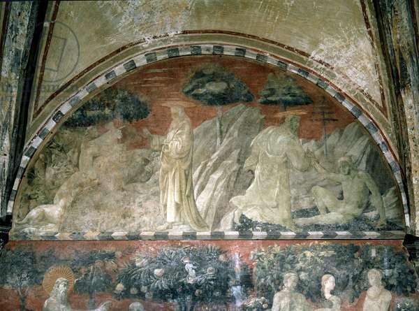 Genesis, creation of the animals and creation of adam - Fresco, 1430