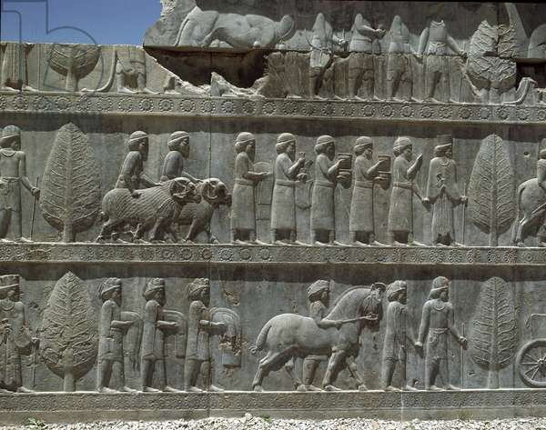 Relief of a procession of vassal nations, eastern staircase of the palace, 518-548 century BC, Apadana, Persepolis, Iran (photo)