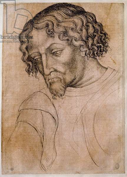 Bust of bearded man, 15th century (drawing)