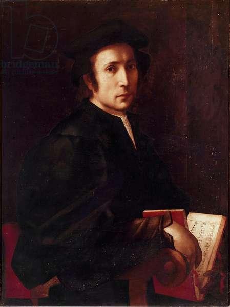 Portrait of Musician Painting of Jacopo (Iacopo) Carrucci dit il Pontormo (Pontormo) (1494-1556) 1518-1519 Sun. 88x67 cm Florence, Galleria degli Uffizi (Uffizi)
