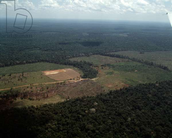 Aerial view of the Amazon forest and the areas of deforestation near Manaus, Brazil - Aerial view of deforestation of the jungle near Manaus, Brazil, 1983 - Photography