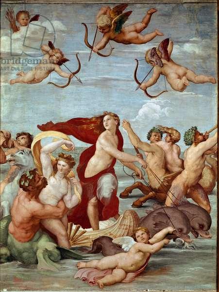The Triumph of Galatee Fresco by Raphael (Raffaello Sanzio 1483-1520). 1511 (fresco)