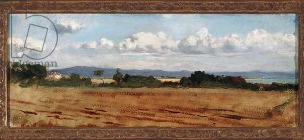 Landscape with clouds in Castiglioncello (oil on canvas, 19th century)