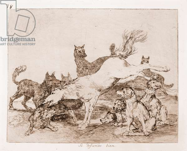 "Destres of the war: """" He defends well"""" (Se defiende bien) Eau forte d'after drawing preparation in red pencil n°78 by Francisco de Goya y Lucientes (1746-1828) 1863 Madrid Musee du Prado"