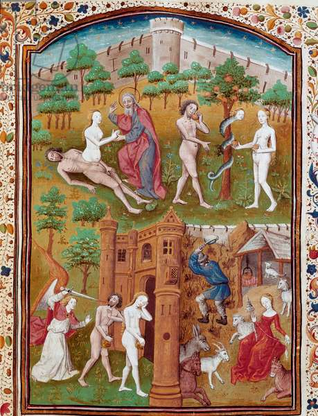 """Birth of Eve from the coast of Adam, Adam and Eve picking the defended fruit and then hunts from Paradise Miniature taken from """""""" Cases of noble men and women unfortunes"""""""" (De casibus) by Giovanni Boccaccio dit Jean Boccace (1313-1375), Italian writer, translated by Laurent de Premierfait and enlumine by the master of Dunois (14th century) 65 Chantilly, Conde Museum"""